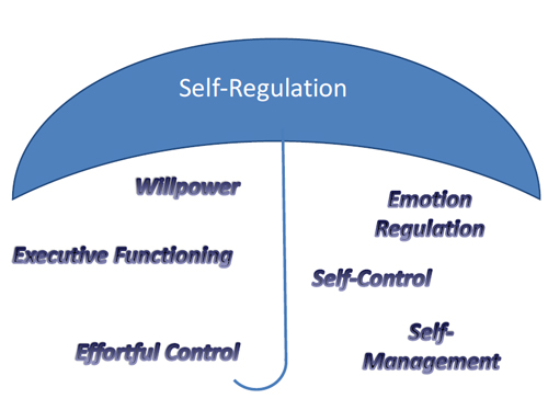 Components of self-regulation